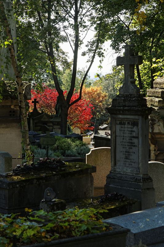 Au Père Lachaise (Paris - France)